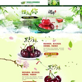 张格庄水果旗舰店首页