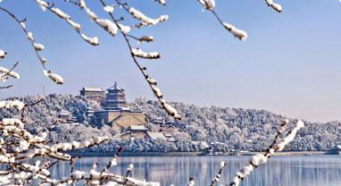 300多万人遭清退,今年的北京,真的太冷了!